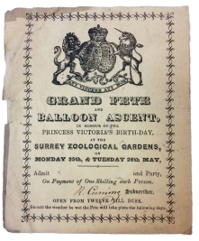 Surrey Zoological Gardens Balloon Ascent Ticket