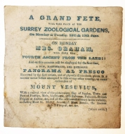 Surrey Zoological Gardens Balloon Ascent Ticket (Mrs Graham)