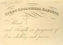 Surrey Zoological Gardens ticket (C5084)