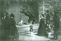 Queen Victoria at Surrey Zoological Gardens (P20757)