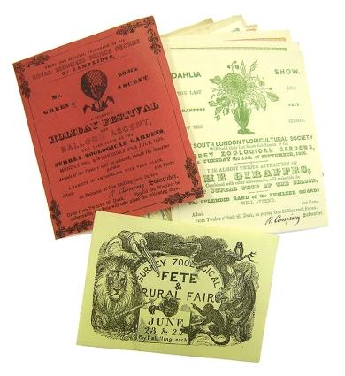 Surrey Zoological Gardens tickets (TN03817)