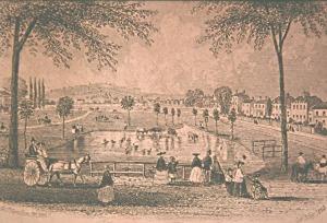 Engraving of Peckham Rye, 1863 (GA0314)