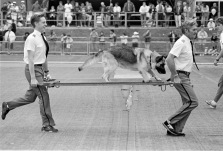 Sports_at_Southwark_Park_1989_10_02_0030